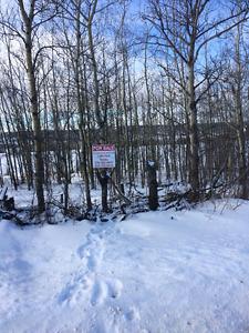 Charlie Lake Veiw Lot