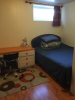 Room in UM area for rent available