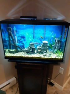 30 gallon Aquarium and stand for sale