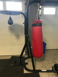Punching Bag and Speed Bag combo w stand $350 OBO