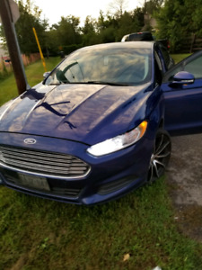 2014 fusion loaded all travel km (Florida and back)