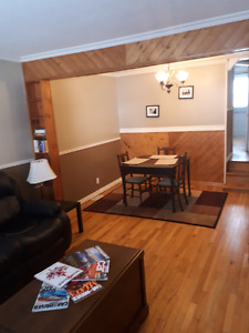 Large 2 Bedroom apartment (Duke Street North Bay)