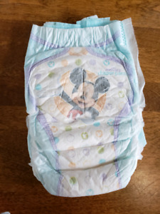 Little Movers diaper Pants