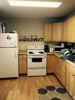 Two Bedroom/ Bright/ Basement Suite/Furnished/  (Poor Pictures)