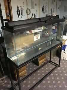 50 Gallon Aquarium and Stand