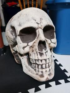 Halloween Giant Skull