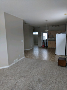 Great suite for rent