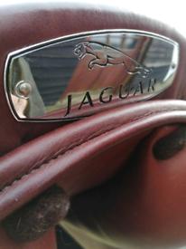 Jaguar very rare collectable!