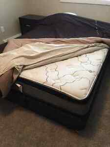 2 Queen size mattress and box springs...New!!!!