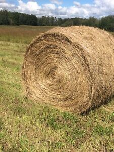 70 Hay Bales For Sale