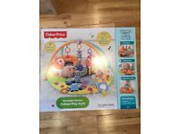 Fisher Price Moonlight Meadow Deluxe gym