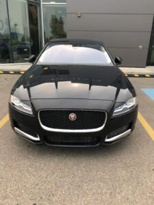 Brand new 2018 Jaguar XF for sale!