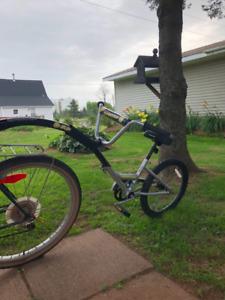 Buddy Tag A long Bike