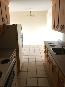 Newly Renovated 2 bedroom ready for end of February