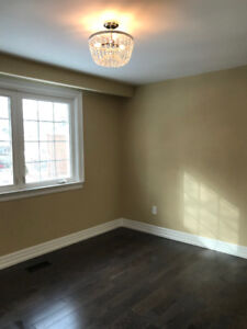 PROFESSIONAL  PAINTERS FOR YOUR NEEDS