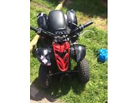 Fully working quad not pit bike