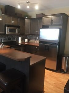 Furnished Silverberry Condo w/ Utilities and Basement