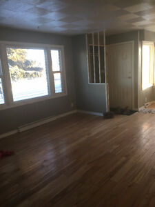 Roommate Wanted