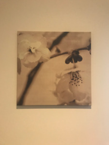 MOVING SALE: Wall Art