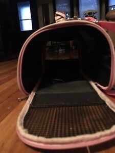 Kitten cage for sale