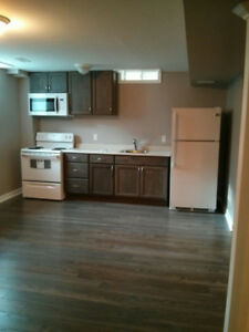 Room in a beautiful basement apartment available for rent