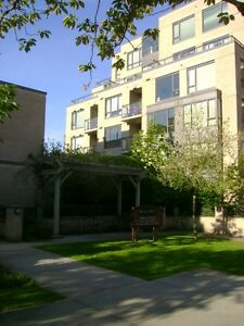 Cambie & Broadway Large 1Brm apt with insuite laundry, storage