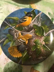"""Kevin Daniel Collectible Plate """"The Baltimore Oriole"""""""