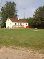 Small quiet country house for rent!