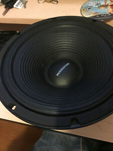 Two 10 inch selenium speakers