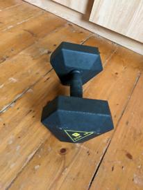 10kg Dumbbell