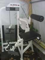 Commercial Life Fitness PRO Low Back Extension