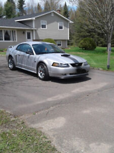 Mint Mustang GT 2003 for sale.