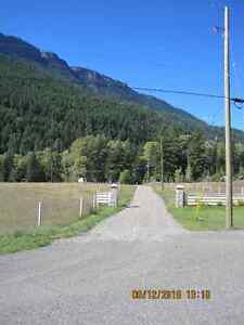 40 acres steady income this is a must see