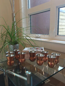 9 copper &  stainless  water drinking mugs NEW