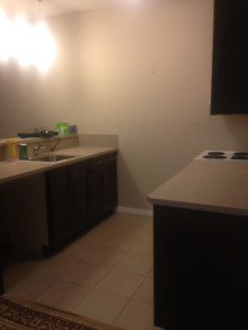 Two Bedroom Basement for Rent