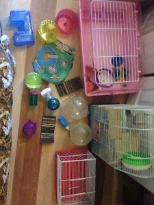 HUGE amount of hamster accessories