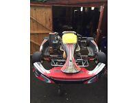 Go karts racing Rotax max
