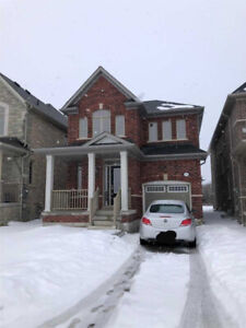 Large New Home for Rent in Ajax -  3 Bedrooms + 3 Bathrooms