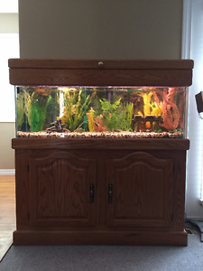 Aquarium with Solid Oak Stand - 45 Gallon