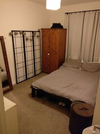 Large Double Room in Recently Renovated Flat (with garden!) in Canning Town, E16