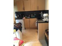 1 bedroom flat for rent - Price reduced