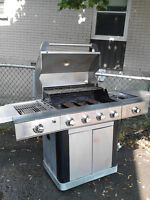 bbq SHINERICH  en stainless