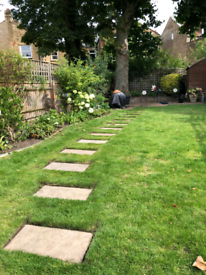 Gardener in Wimbledon, Putney, Clapham, Kingston and more