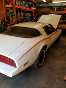 1980 Firebird Espirit project car