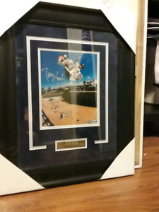 Framed 8x10 autographed pictice of Tony Hawk