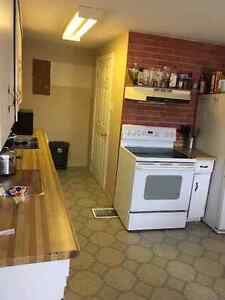 ONE ROOM IN A 5 BED STUDENT HOME 2 MINUTES FROM ST LAWRENCE Kingston Kingston Area image 6
