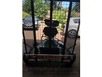 Elite golf buggy and trailer