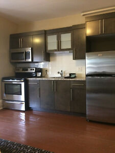 Furnished 1 bedroom for 4/8 month lease term beginning Sept