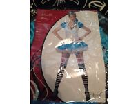 Alice in Wonderland fancy dress costume size small Halloween oufit