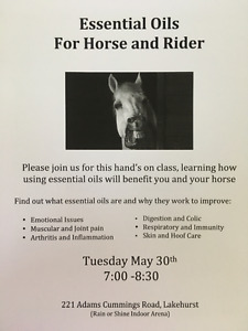 Essential Oils for Horse and Rider class